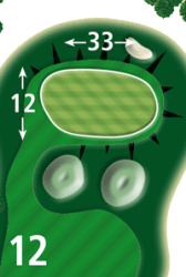 Green Tee 12