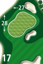 Green Tee 17