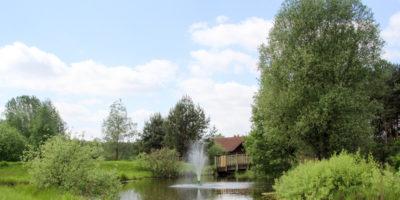 Bild Blick auf den Springbrunnen an der Bahn 18