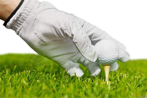Bild Hand mit Handschuh steckt ein Holztee in den Rasen