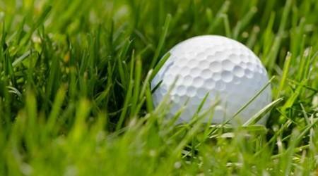 Bild Golfball auf dem Gras