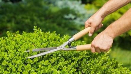Greenkeeping 3