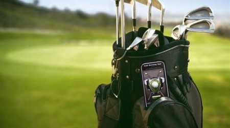 Bild Schläger in Golftasche