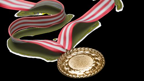 Bild Siegermedaille